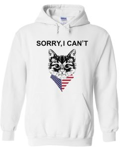 sorry i can't hoodie